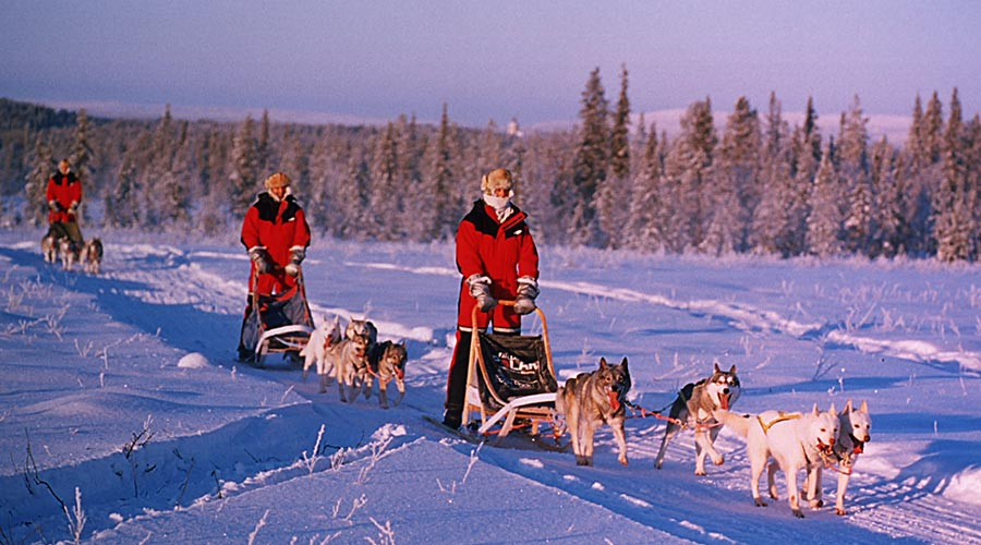 Husky-Expedition-Lappland-Finnland-18-900x500.jpg